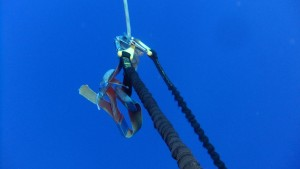 The end of the rope, just where the divers were attached. It is hard to believe that this is under water, it is so clear!
