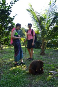 The Howler monkey as seen on the way back. With Karin J and Sophia