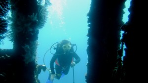 Sophia diving on the wreck in Bequia